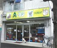 相模原市のミックス犬専門店 ペットショップA−ワン
